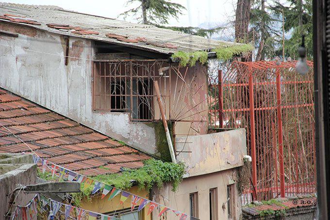 Çatıdaki hayat - İstanbul