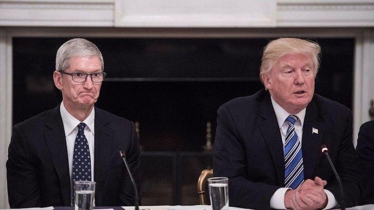 "Tim Cook Dice que 250 Empleados de Apple Son ""Soñadores"" como Donald Trump Decisión sobre DACA se Acerca"