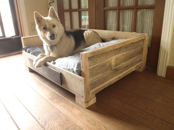 Old pallets make great dog beds!