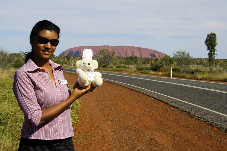 Le Cordon Bleu Béchamel Bear visited an alumni in Uluru