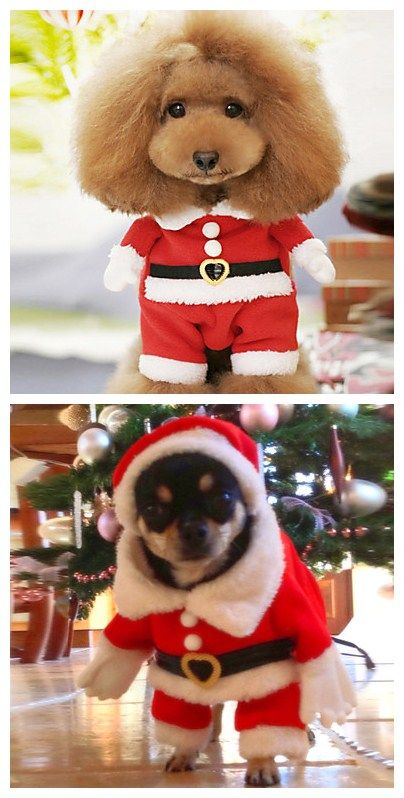 So cute  Santa Claus Costume for your puppy~