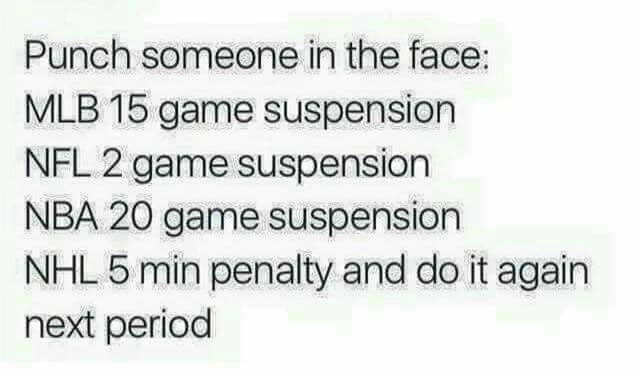 Yep, you got to love hockey! !!!