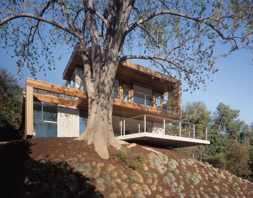 Best Modern Tree House Ideas On Pinterest Glass Cabin - Contemporary banyon treehouse california