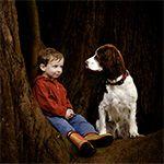 8 tips om je huisdier te fotograferen