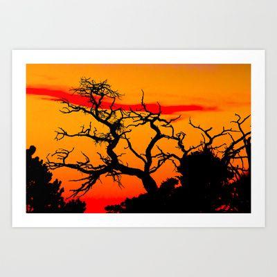 Desert fingerling tree Art Print by Tim Eisenhauer - $17.68