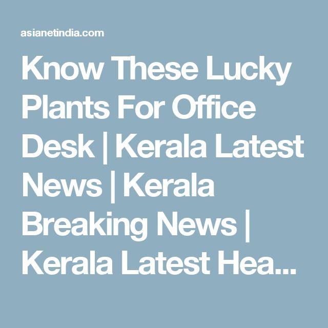 Know These Lucky Plants For Office Desk | Kerala Latest News | Kerala Breaking News | Kerala Latest Headlines | Latest Kerala News | Health | Women | Business | NRI | IT | Sports | News Breaks | News