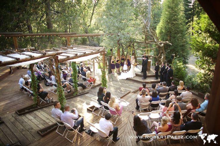 Pine Rose Weddings Pinerose Weddings