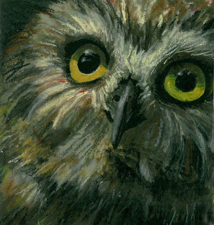 Oil Pastel Drawings Of An Owl Saferbrowser Yahoo Image Search Results Oil Pastel Oil Pastel Drawings Bird Drawings