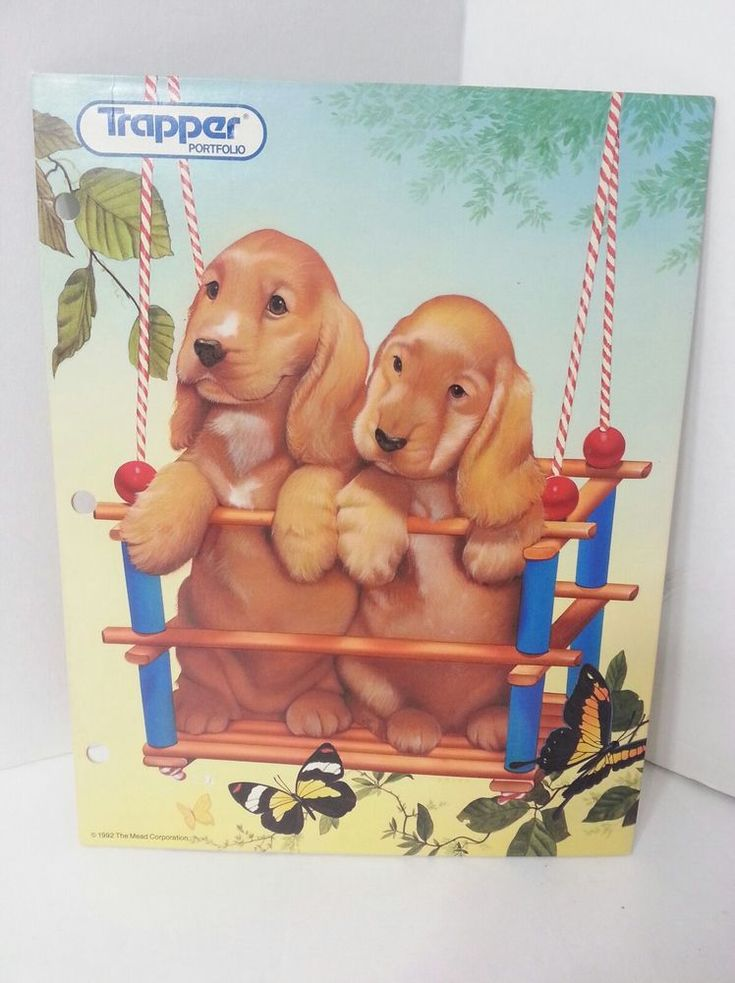 Vintage 1992 TRAPPER KEEPER Portfolio Binder Folder Puppies In Swing Butterflies #TrapperKeeper .25 cents few months to sell