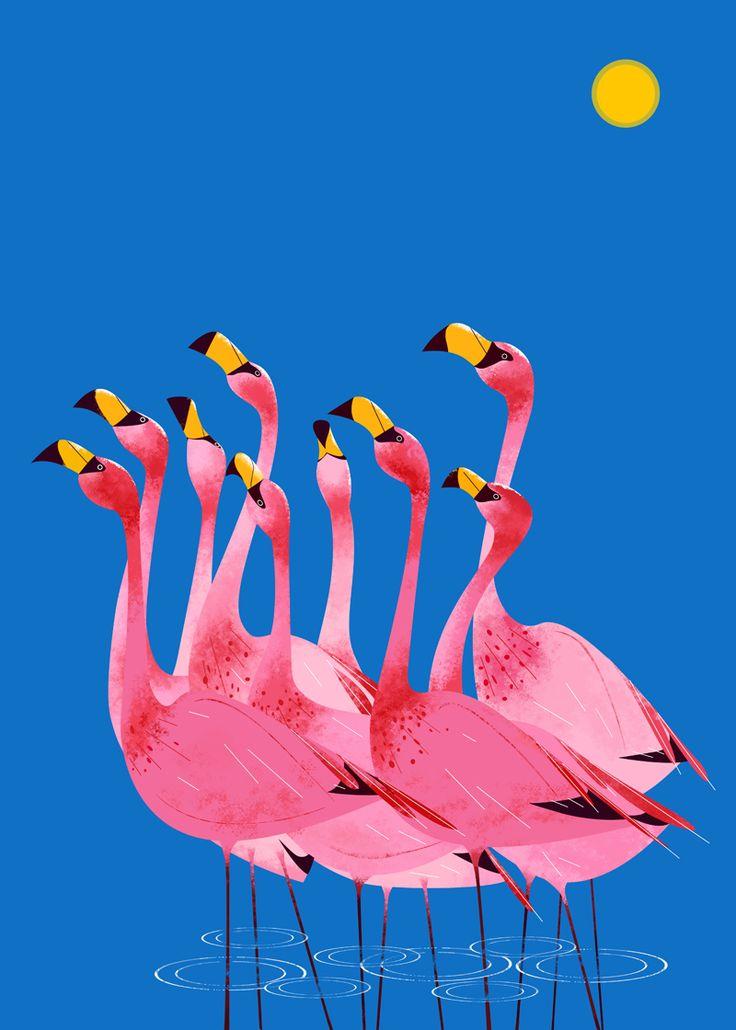 Best 25 Flamingo Art Ideas On Pinterest