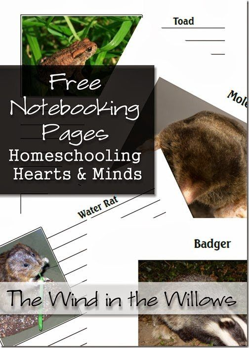 FREE Notebooking Pages Homeschooling Hearts and Minds