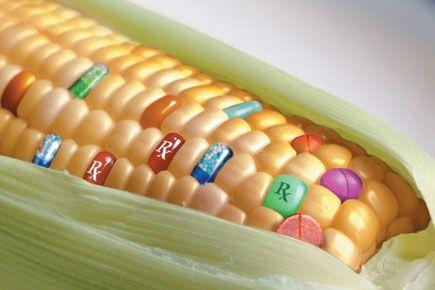 Cibo BIO e OGM: Una Scelta di Principio
