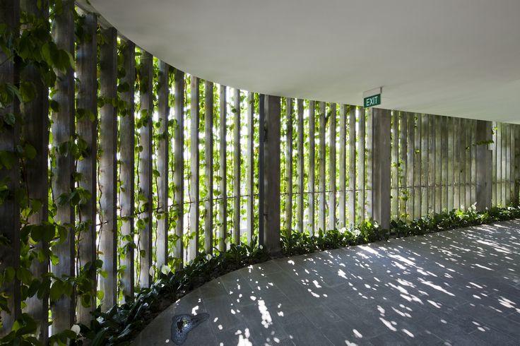 Galeria de Naman Retreat / Vo Trong Nghia Architects - 8