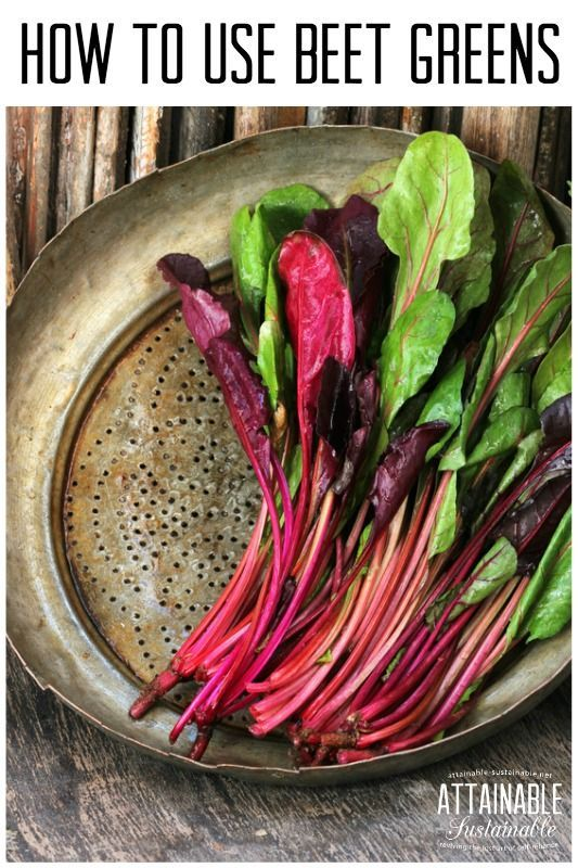 Did you know that beet greens are edible? Sure, your chickens love 'em, but your family might, too! Here's how to get twice as much from your beet harvest.