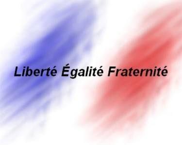L E F. Liberté Egalité Fraternité. Image réalisée par françoise Zia en hommage des victimes de Paris.