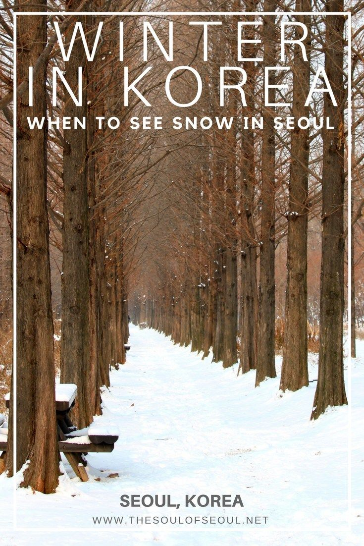 Winter In Korea, When To See Snow in Seoul: One of my most frequently asked questions regards snowfall in Seoul. When to see snow, what to do in the winter in Korea and where to take pictures of snowflakes as they fall. Plan now to see snow in Seoul!