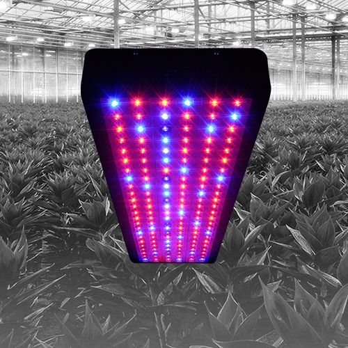 17 Best Images About LED Grow Lights On Pinterest
