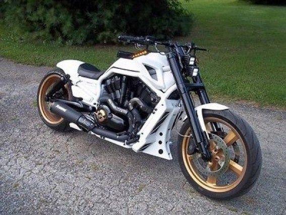 V Road Muscle Harley Davidson 00059
