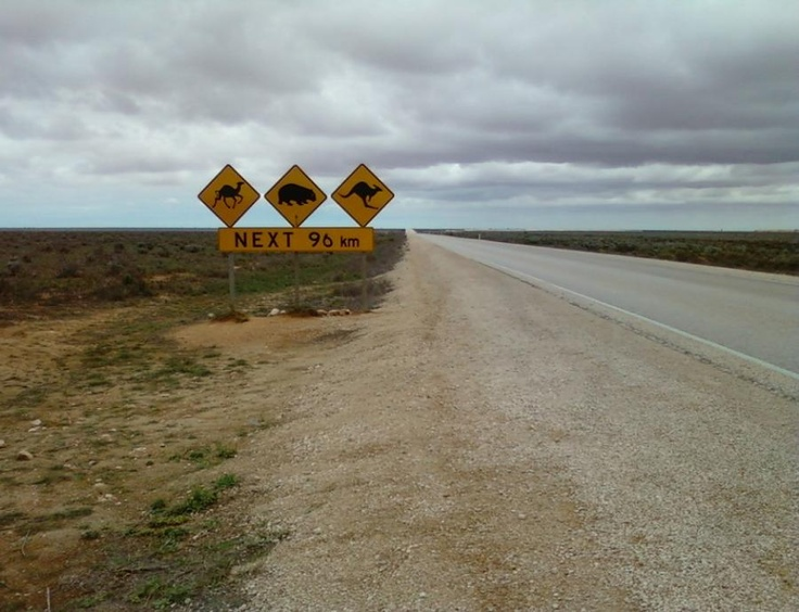 Nullabor Plain I have crossed it, approx 10 times, amazing space. photo by Joan Schmidt