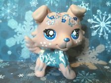 Frozen Winter Chill Collie Dog  * OOAK Custom Littlest Pet Shop  hmmm  $75