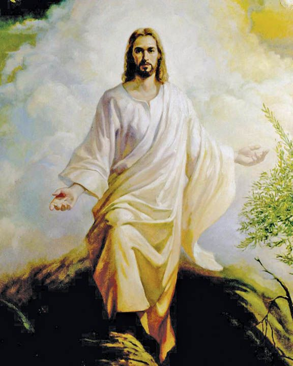 a personal description of jesus christ The characteristics of the anti-christ  if you are denying jesus christ is god and that he came in the flesh and lived a perfect, sinless life, .