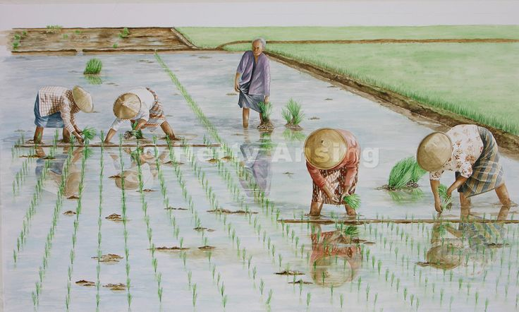 Van de hand van Hetty Ansing 'Women on the sawah' Aquarel