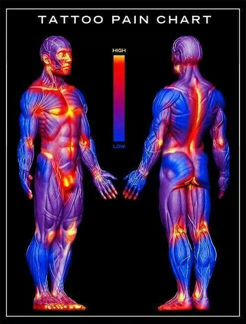 tattoo pain chart tattoos pinterest pain d u0026 39 epices