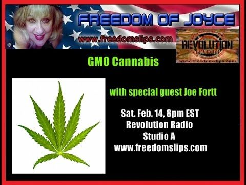 GMO #Cannabis with guest Joe Fortt. GMO Cannabis is being grown in Uraguay and backed by business magnate, inventor, and philanthropist George Soros. Guest Joe Fortt also confirms that Canada is now experimenting and growing genetically modified cannabis. Guest Joe Fortt also gives his personal account of government take over of his California medical marijuana collective, loss of custody of child, suspect death of wife and relocation to Canada. .