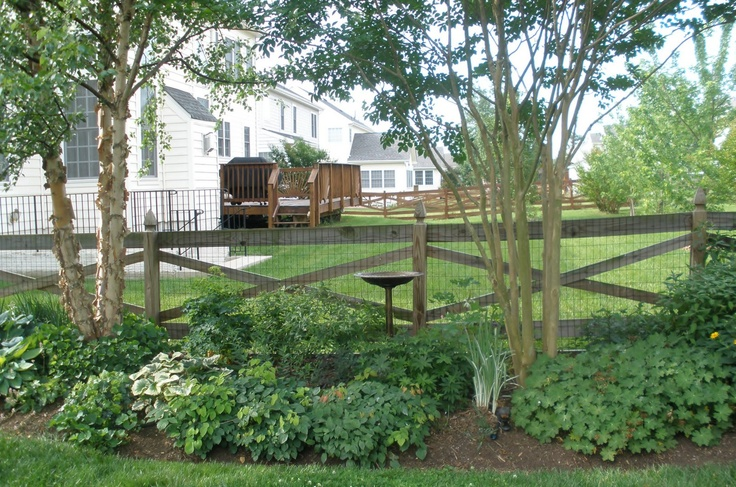 Landscaping around crepe myrtles