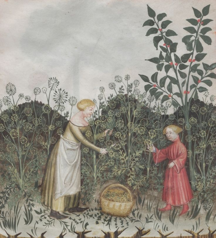 Woman with child in a garden harvesting anise - Aneti | Österreichische Nationalbibliothek - Austrian National Library | Public Domain
