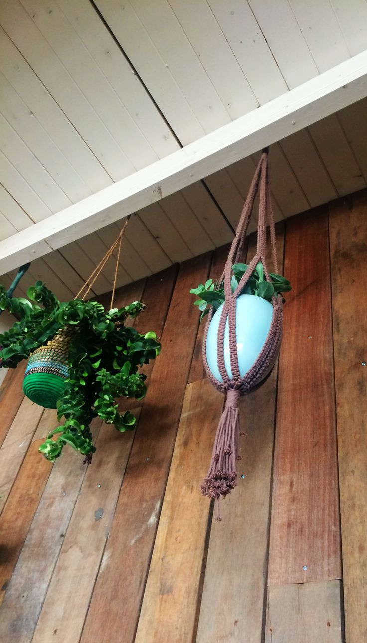 Cute hanging planters