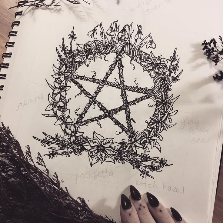"poisonappleprintshop: "" This drawing is a few years old now but I'm finally going to make it into a screenprint! A pentacle wreath made up of winter flowers: Snowdrops, Jasmine, Witch Hazel, Poinsettias, and glory-of-the-snow!  #poisonappleprintshop..."