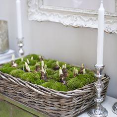 Einfache Idee mit toller Wirkung: Zwiebelblumen wie Hyazinthen, Tulpen oder Narzissen in eine Auflaufform setzen und mit Moos auffüllen. Die Form dann in einen Korb stellen #flowers #DIY