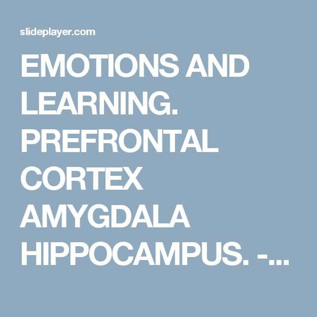 EMOTIONS AND LEARNING. PREFRONTAL CORTEX AMYGDALA HIPPOCAMPUS. -  ppt download
