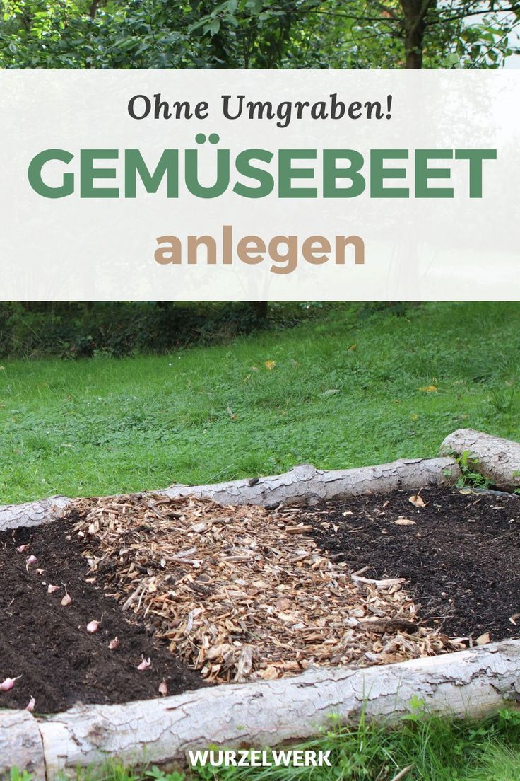 Gemusebeet Anlegen In 6 Schritten Ganz Ohne Umgraben Wurzelwerk Garten Bepflanzen Gemusebeet Selbstversorger Garten