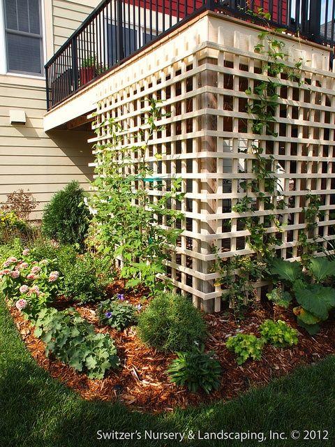 Put lattice around deck & grow hops/clematis all around for a nice pleasing aesthetic look! Under Deck Patio Ideas | visit google com