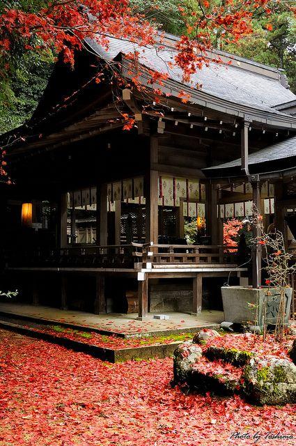 Tomi-Shrine, Nara, Japan