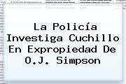 http://tecnoautos.com/wp-content/uploads/imagenes/tendencias/thumbs/la-policia-investiga-cuchillo-en-expropiedad-de-oj-simpson.jpg OJ Simpson. La policía investiga cuchillo en expropiedad de O.J. Simpson, Enlaces, Imágenes, Videos y Tweets - http://tecnoautos.com/actualidad/oj-simpson-la-policia-investiga-cuchillo-en-expropiedad-de-oj-simpson/