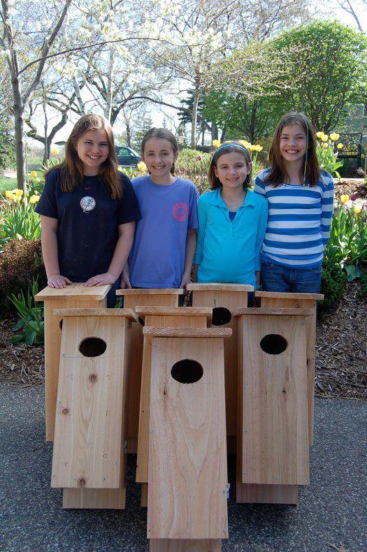 12 Girl Scout Junior Bronze Award project ideas