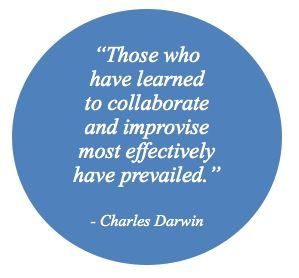 collaboration-quote1.jpeg (299×278)