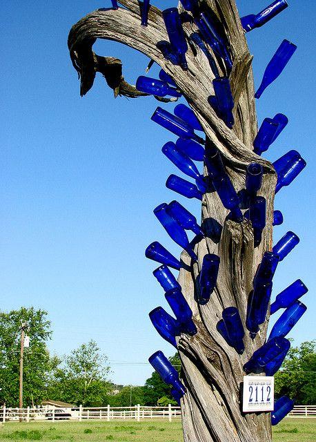 Landmark by jtuason, via Flickr cobalt blue bottles on an old swirled tree trunk