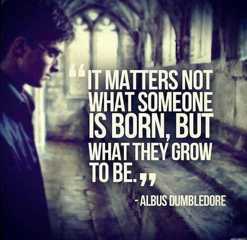 -Albus dumbledore-