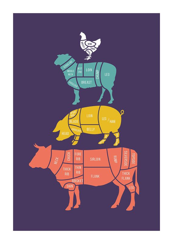 A guide to cuts of meat and where they come from. | 31 Beautiful Posters That Will Teach You A Damn Thing