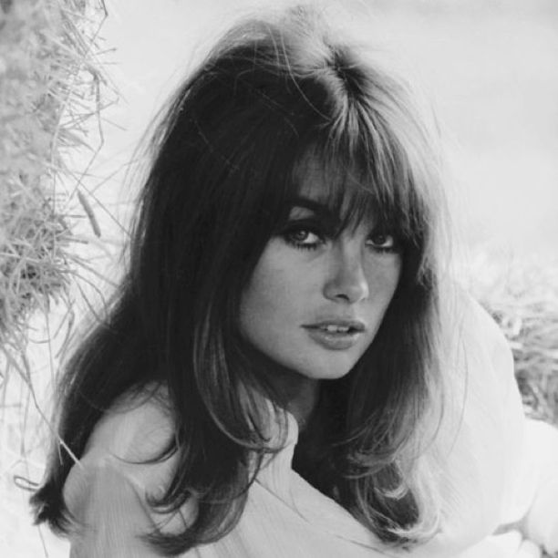 Jean Shrimpton Alchetron The Free Social Encyclopedia