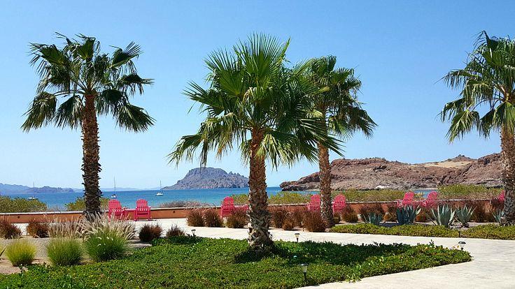 Bay view from Villa del Palmar Loreto