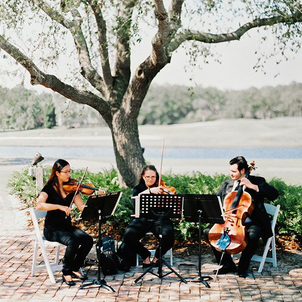 A string quartet creates an enchanting ceremony atmosphere — consider hiring musicians from a local college to cut down on costs. A solo violinist, harpist, or vocalist are also lovely choices for couples with a classic wedding style.