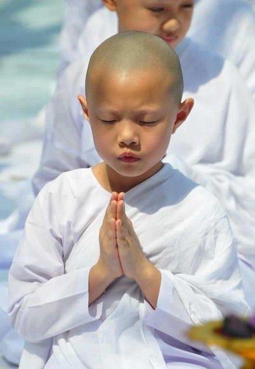 """maya47000: """" Silence is sometimes the best answer . Dalai-Lama """""""
