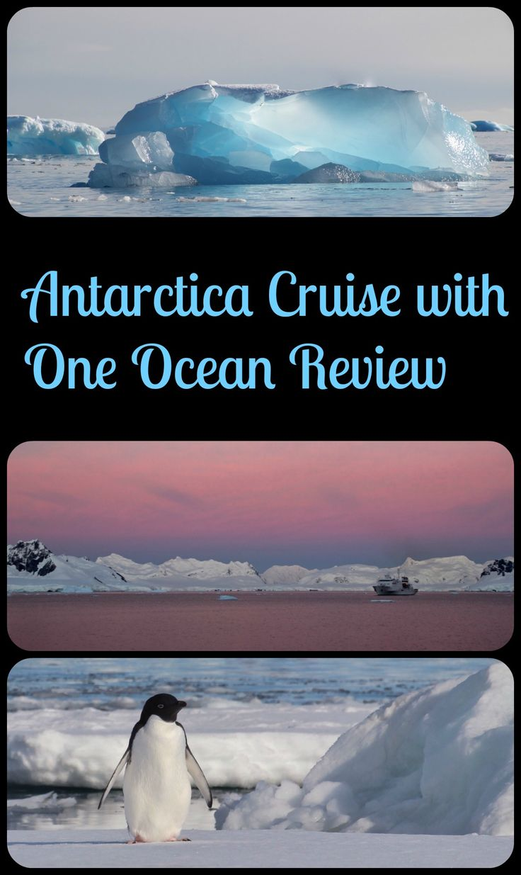 When my ultimate travel dream became a reality. Antarctica! This story has ice, penguins, whales, drama, and some interesting characters....