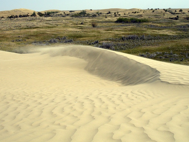 Great Sand Hills near Sceptre
