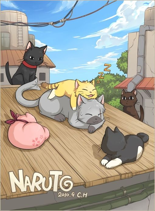Naruto. Let's is if I can guess this right? Gray cat is Kakashi, orange is Naruto, pink is Sakura, black with red collar is Sasuke, black with white tummy is Sai, dark brown with scary eye's is Yamato.